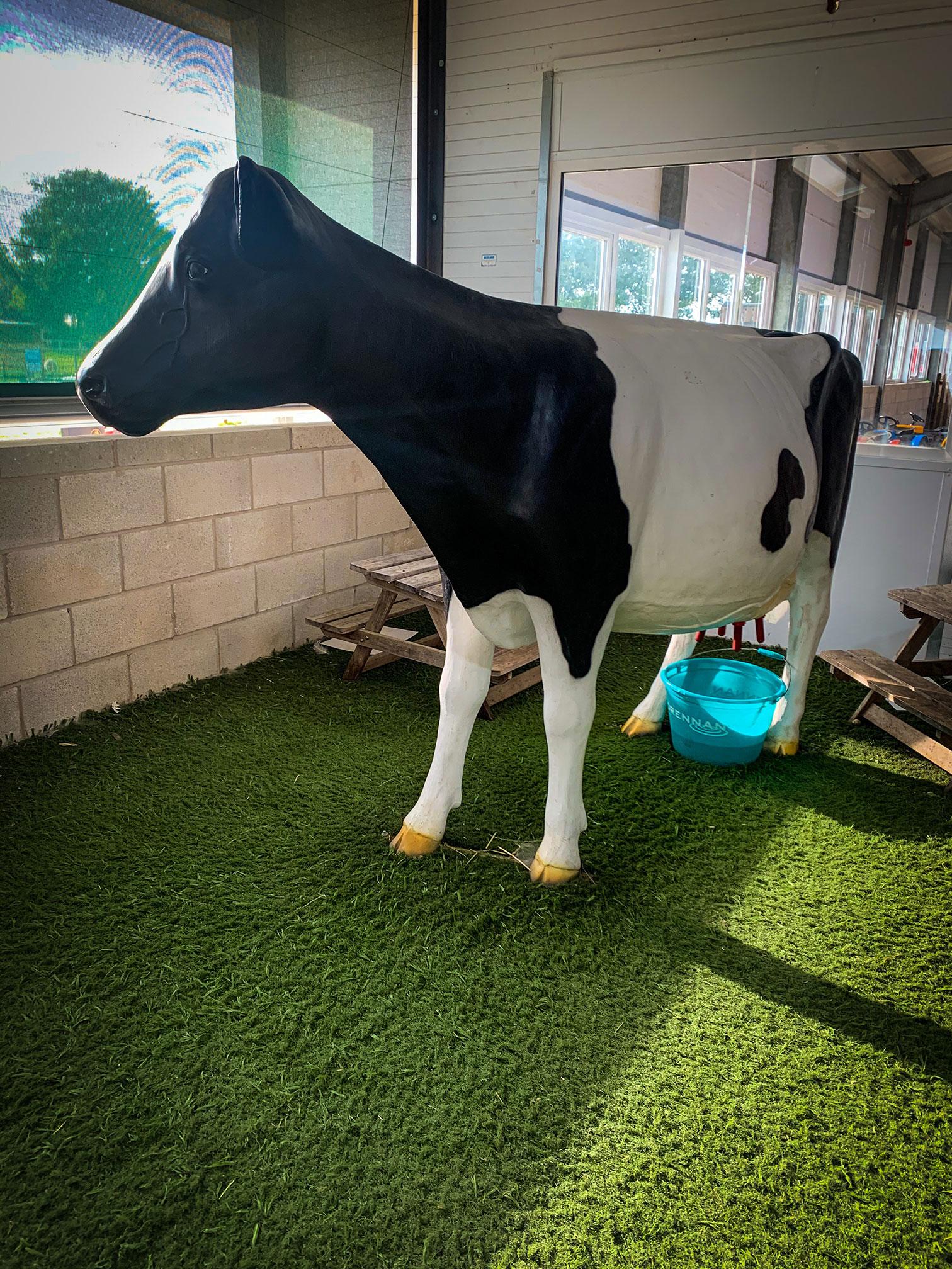 Mooana the Milking Cow